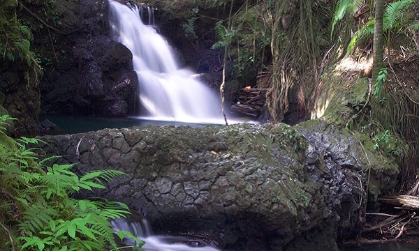 Forest Waterfalls Travel | Golf Hawaii