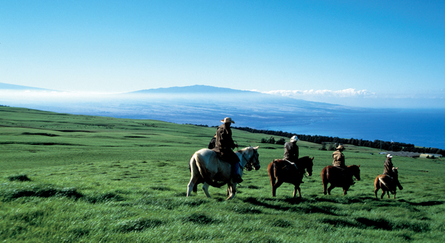 Horseback riding, Kohala | Golf Hawaii