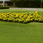 The Masters flowers logo